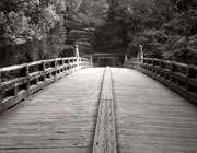 پلی برای عبور