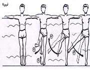 تمرینات آب درمانی4