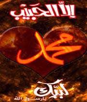 hz.muhammed