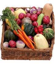 فيبر غذايي و اثرات آن