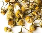 گل بابونه خشک