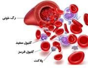 آزمایش مقدار پلاکت خون