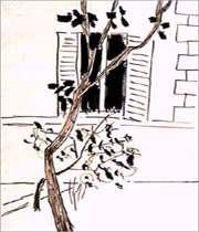 از نقاشیهای سهراب سپهری