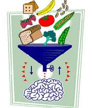 تقویت حافظه با غذاها