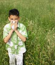 آلرژی در فصل گرما