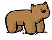 خرس تاخورده