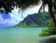 جزیره پولنژیا