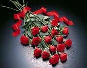 لال گلاب