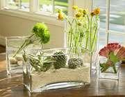 تهیه باغچه شیشه ای