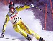 التزلج،رياضة