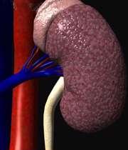 نفروپاتی دیابتی