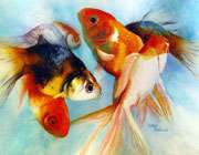 تربيت فرزند به روش پرورش ماهي