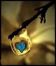 آموزش ریشه کنی عشق!