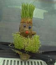 سبزههاي چيني روي سفرههاي ايراني