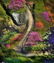 زیباترین باغ دنیا یا بهشت روی زمین