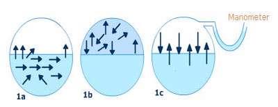 فشار بخار مایعات