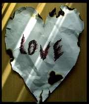 جاودانگی یک عشق