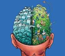 مغز، حافظه