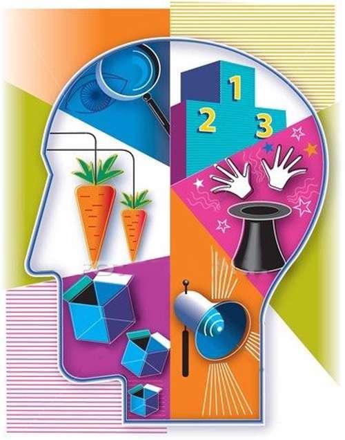 اطلاعاتی در مورد مغز انسان
