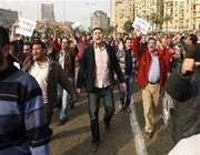 последние события в египте