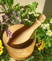 معرفی برخی گیاهان دارویی