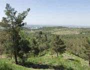 غابات ومتنزهات طهران