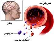 نقش سروتونین در بدن
