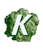 ویتامین k و منابع غذایی آن