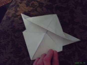 لاک پشت کاغذی