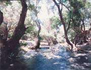 qadamgah mineral water spring, eqleed
