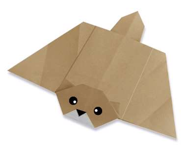سنجاب پرنده ی کاغذی