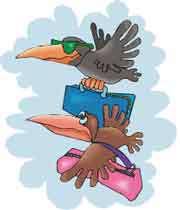 لانه سازی و مهاجرت پرندگان