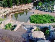 باغ موزه گیاه شناسی قشم