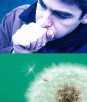 چه عواملی باعث حمله آسم میشوند؟