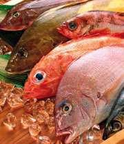 چرا ماهی، کدام ماهی، چقدر ماهی!؟