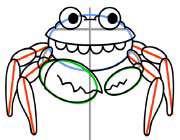 یک خرچنگ زیبا بکشید!