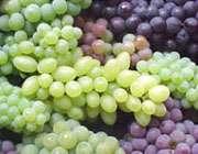 خواص انگور در طب اسلامی
