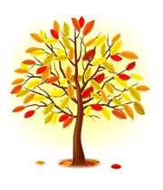 مزاج پاییز و زمستان و تدابیر آن