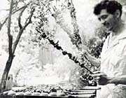 فرهنگ غذا خوردن در دوره قاجار