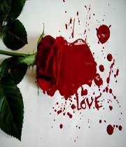 آیا عشق و عاشقی با ازدواج از بین میرود؟