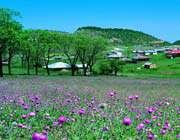jahan-nama village