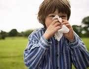 آلرژی تابستان