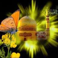 کلیپ های تصویری ویژه ولادت امام رضا علیهالسلام (سال 92)
