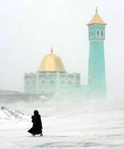 مسجد قطبی