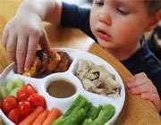 2104625496133243142817916124714416615759135 نسخه غذایی برای کودکان دو ساله