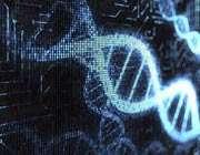 شناسایی هویت شهدای گمنام به کمک ژنتیک