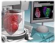 ساخت قلب زنده با چاپگر سهبعدی