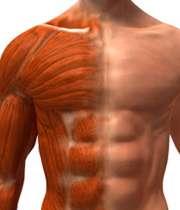 میوزیت؛ التهاب و ناتوانی عضلات
