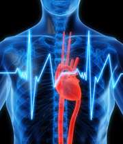 کاهش ضربان قلب؛ علل و عوارض