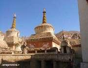 شیعهای از سرزمینی بودایی